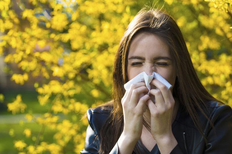 Top Tips to Survive Allergy Season